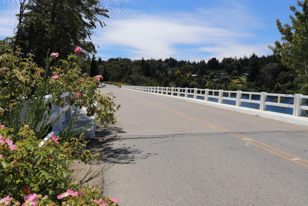 Puente Lago Moreno en Bariloche