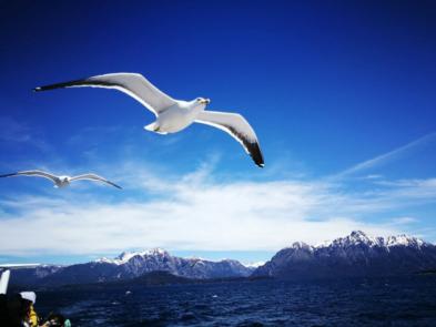 navegación  por lago nahuel huapi