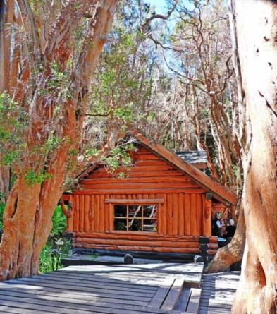 casa de te en bosque de arrayanes